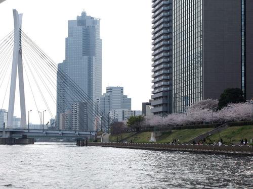 中央大橋080404_053_edit-1.jpg