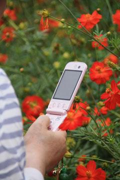 x2_20090823_019-bl.jpg
