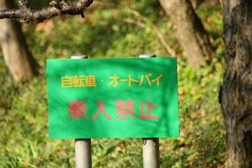 x2_20091126_127-bl_s.jpg