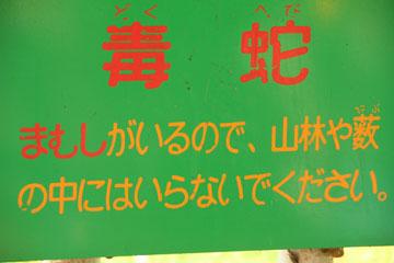 x2_20091126_130-bl_s.jpg